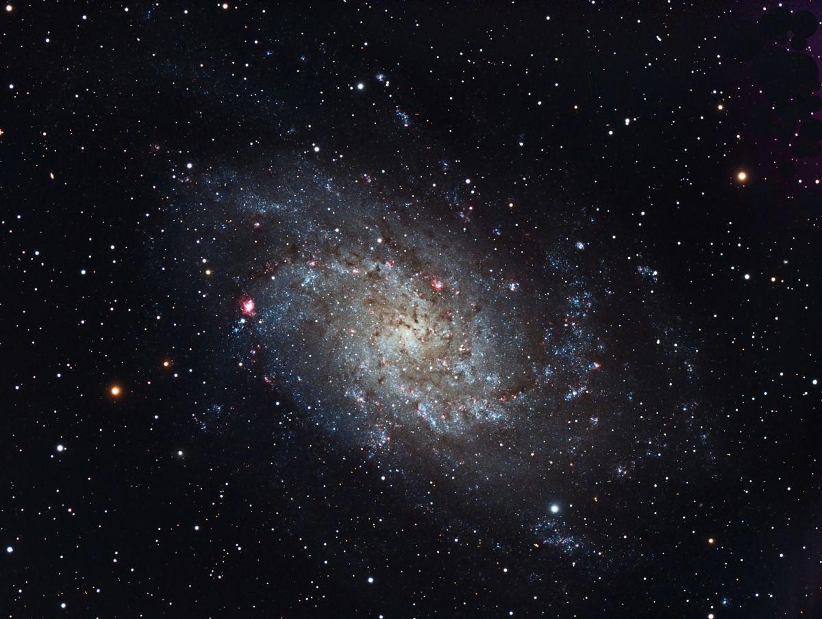 M33 Triangulum - Gary Opitz
