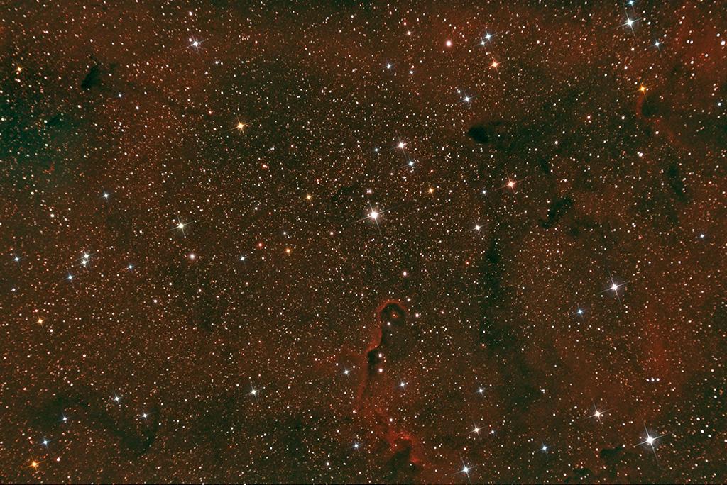 Joel Schmid - IC1396 Elephants trunk Nebula