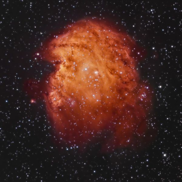 Monkey head nebula - Andy Chatman
