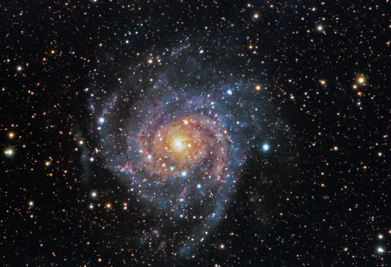 Dan Kuchta - IC 342 Hidden Galaxy